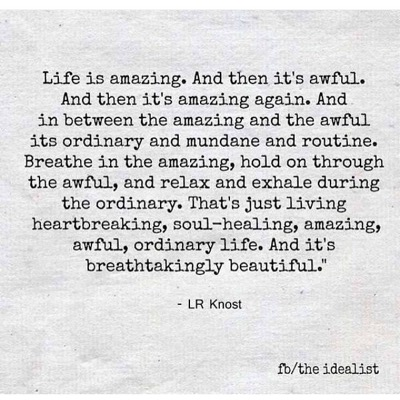 Life Is Amazing, Awful & Ordinary